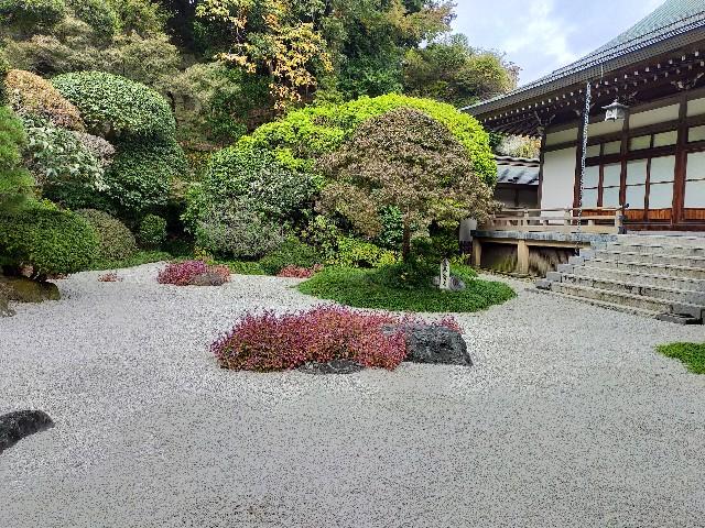 f:id:atsuyoshiblog:20201111203005j:image