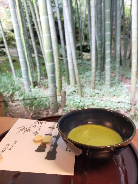 f:id:atsuyoshiblog:20201111203351j:image