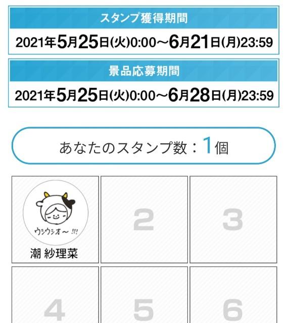 f:id:atsuyoshiblog:20210525235635j:image