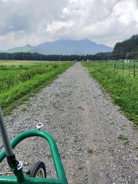 f:id:atsuyoshiblog:20210717121723j:image
