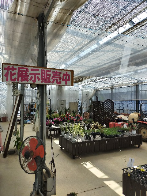 f:id:atsuyoshiblog:20210717122409j:image