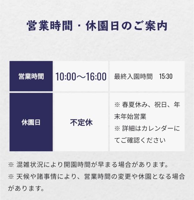 f:id:atsuyoshiblog:20211002113510j:image