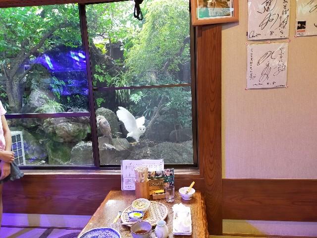 f:id:atsuyoshiblog:20211002132326j:image