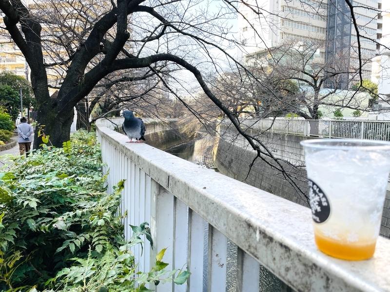 f:id:atsuyoshinarumi:20201213095249j:plain