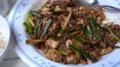 [食]ウー・ウェンさんの麻婆豆腐