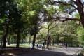 [散歩][公園]新宿中央公園