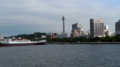 [散歩]横浜港大桟橋埠頭から山下公園を見る