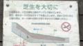 [散歩]横浜港大桟橋埠頭