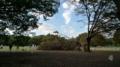[散歩]代々木公園