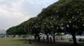 [散歩]山下公園