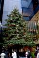 [散歩]銀座本店前ガーデンプラザのミキモトジャンボクリスマスツリー