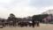 皇居東御苑、皇宮警察音楽隊ランチタイムコンサート♪