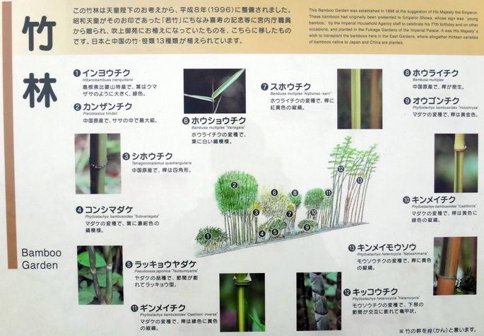 皇居東御苑、竹林の説明