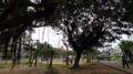 [旅][散歩]緑ヶ丘公園