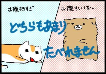 f:id:atui_otya:20160513234050j:plain
