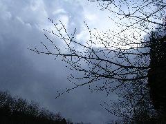 f:id:avdk101:20130225012049j:image