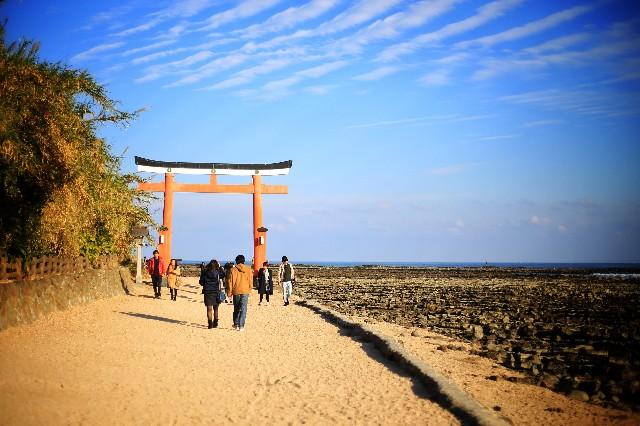 宮崎県青島神社の写真