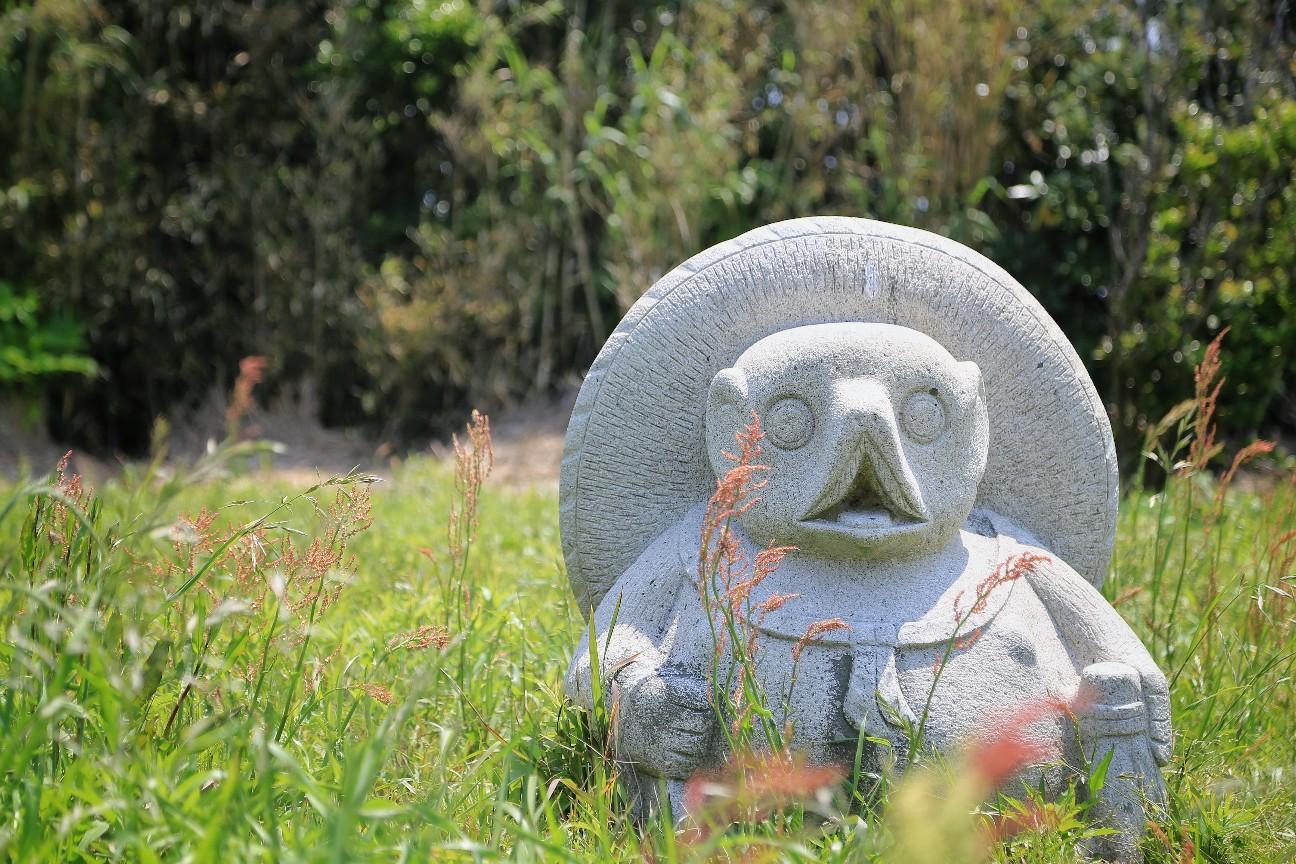福岡県糸島のたぬき