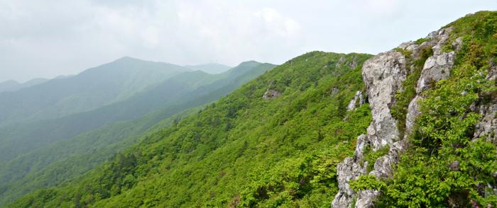 小白山(1439m)後編・・・・・・2012年6月1日・・・栄州市 ...