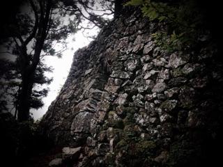 f:id:awa-otoko:20141009004549j:plain