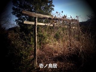 f:id:awa-otoko:20141009205925j:plain