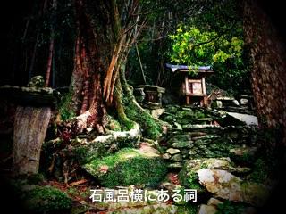 f:id:awa-otoko:20141020223634j:plain