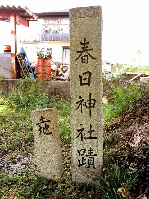 f:id:awa-otoko:20141120212443j:plain