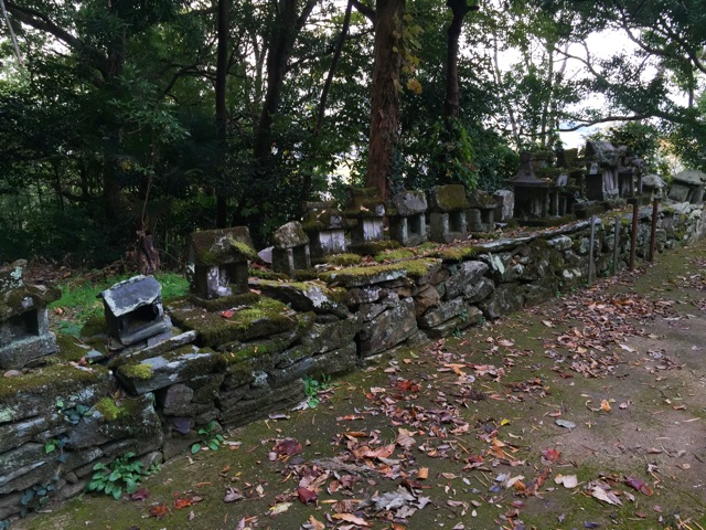 f:id:awa-otoko:20141124220400j:plain
