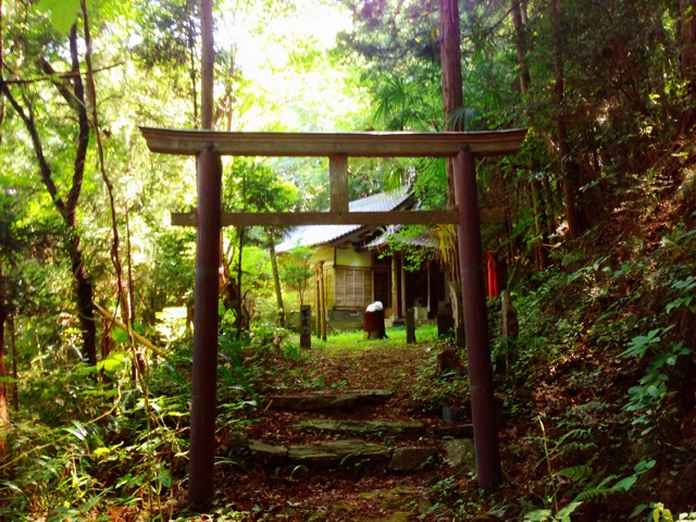 f:id:awa-otoko:20141127215419j:plain