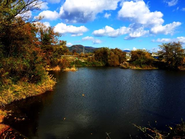 f:id:awa-otoko:20141206182826j:plain