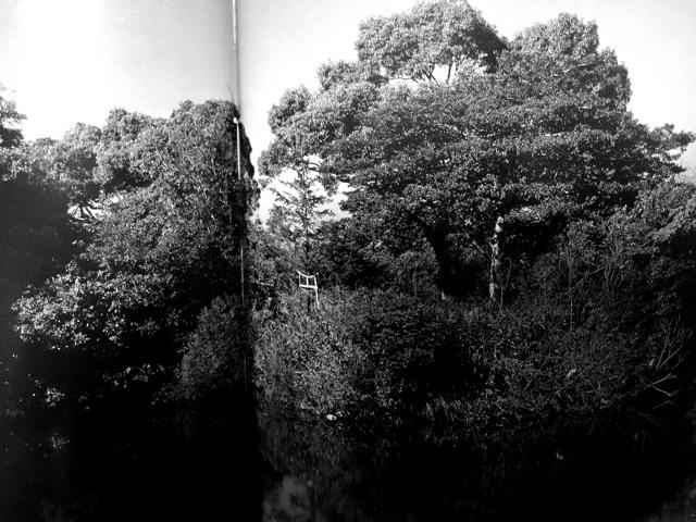 f:id:awa-otoko:20141206183006j:plain