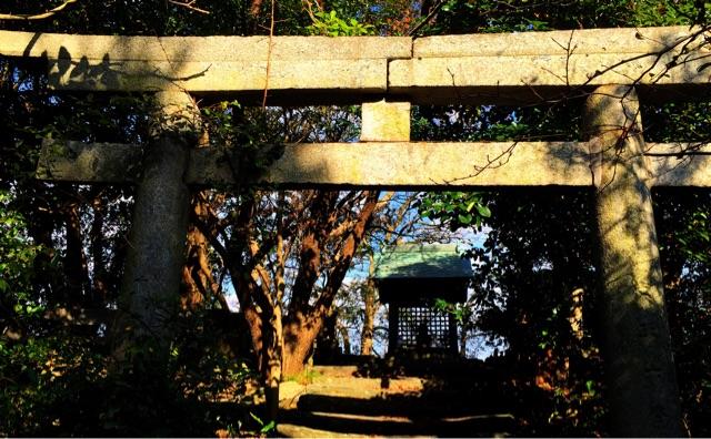 f:id:awa-otoko:20141208204936j:plain