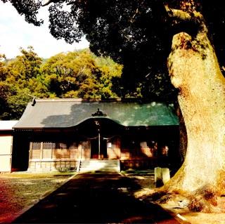 f:id:awa-otoko:20150124192300j:plain