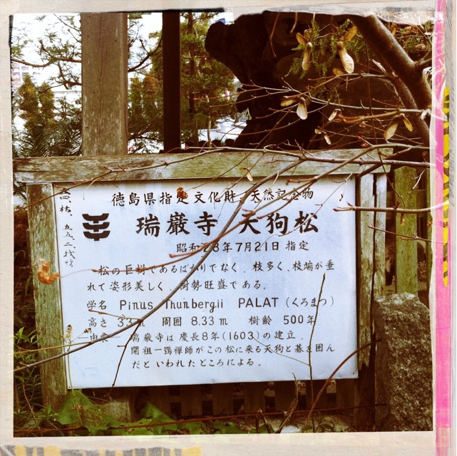 f:id:awa-otoko:20150415224543j:plain