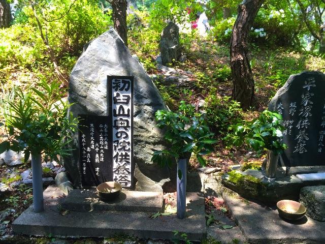 f:id:awa-otoko:20150425155623j:image