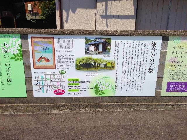 f:id:awa-otoko:20150613193016j:image
