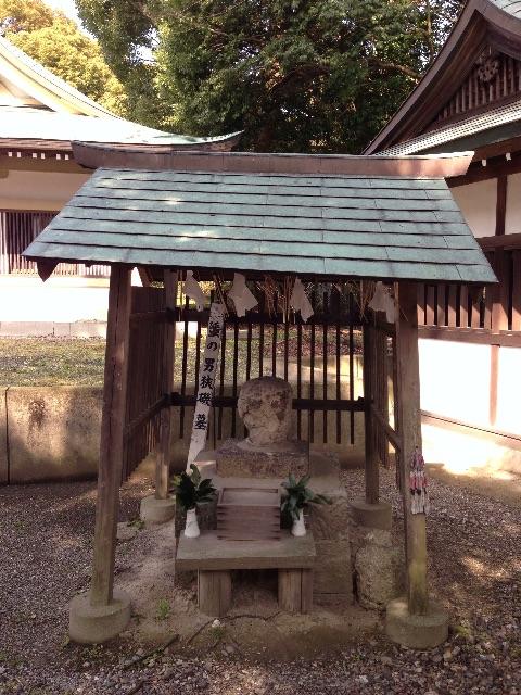 f:id:awa-otoko:20150613193134j:image