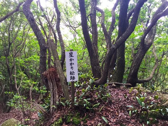 f:id:awa-otoko:20150614235630j:image