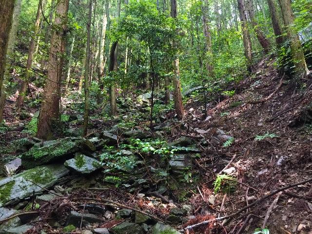 f:id:awa-otoko:20150620161711j:image