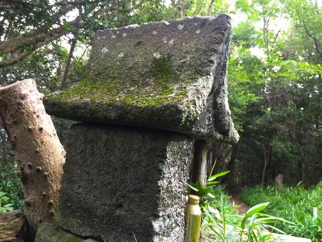 f:id:awa-otoko:20150627184651j:image