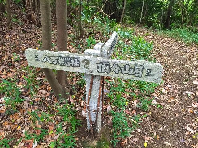 f:id:awa-otoko:20150627195350j:image