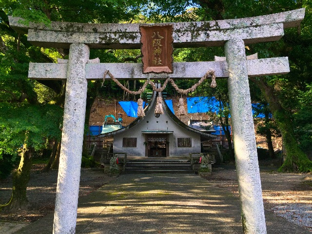 f:id:awa-otoko:20150710000143j:image