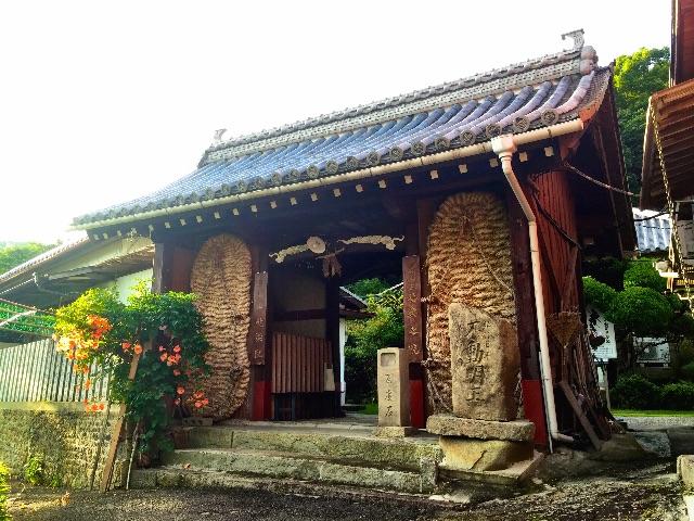 f:id:awa-otoko:20150711010758j:image