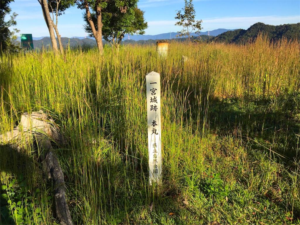 f:id:awa-otoko:20151009115537j:image