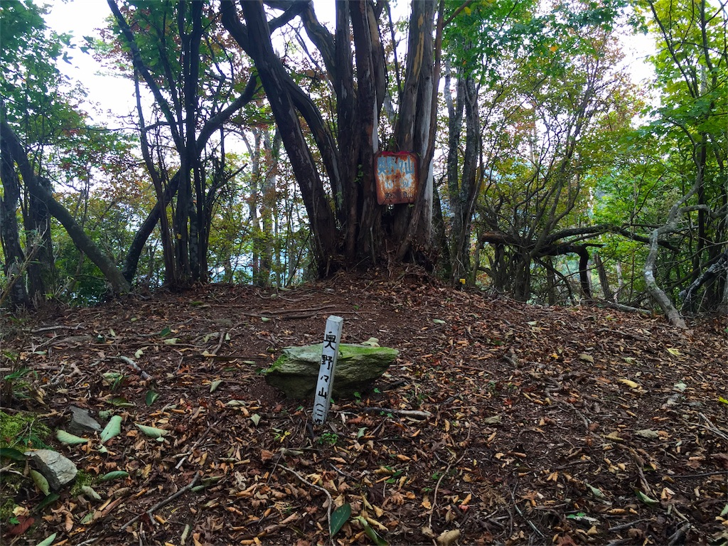 f:id:awa-otoko:20151011013337j:image
