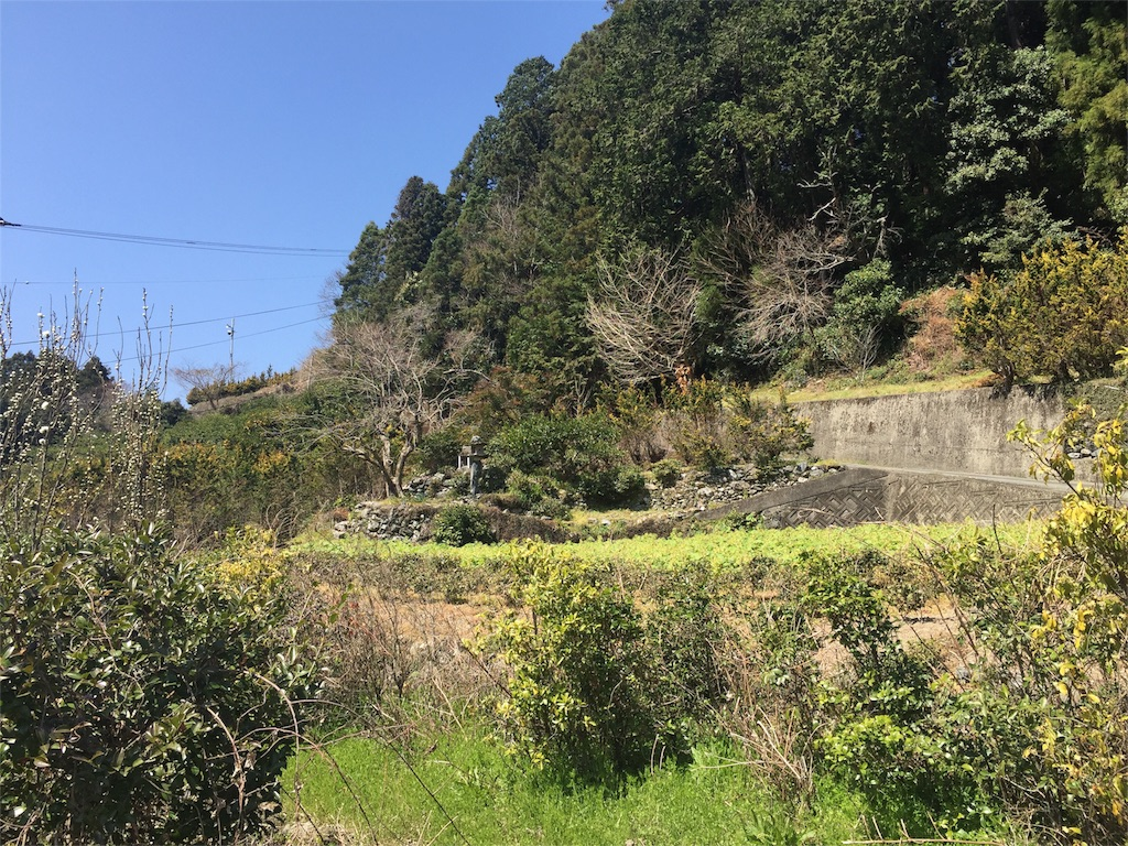 f:id:awa-otoko:20160326181537j:image