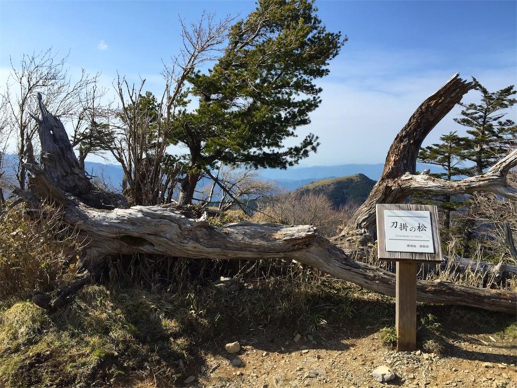 f:id:awa-otoko:20160501232621j:image