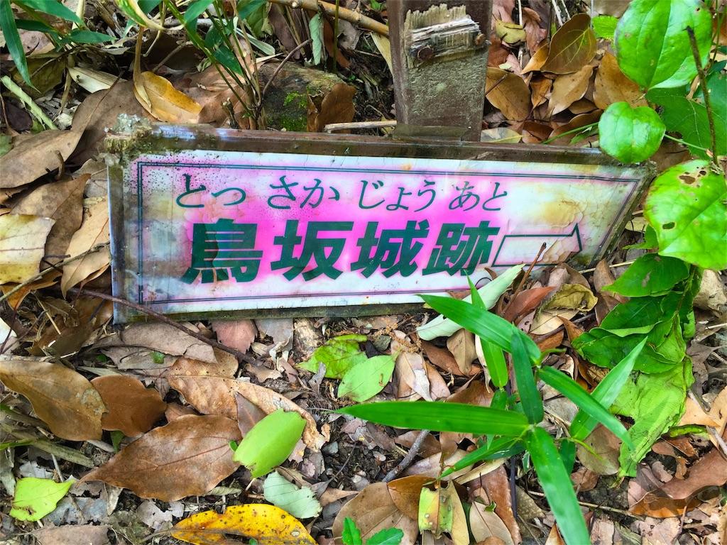 f:id:awa-otoko:20160512232842j:image