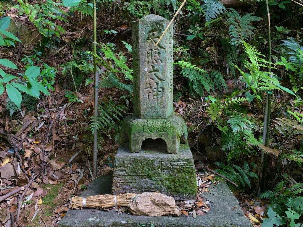 f:id:awa-otoko:20160512233206j:image