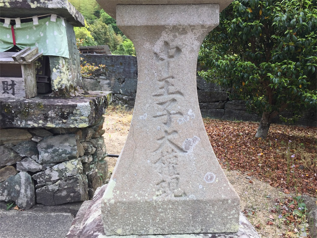 f:id:awa-otoko:20160512233434j:image